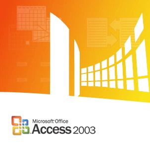 ACCESS 2003, X32, GOV, SA, 1U, OLP-NL