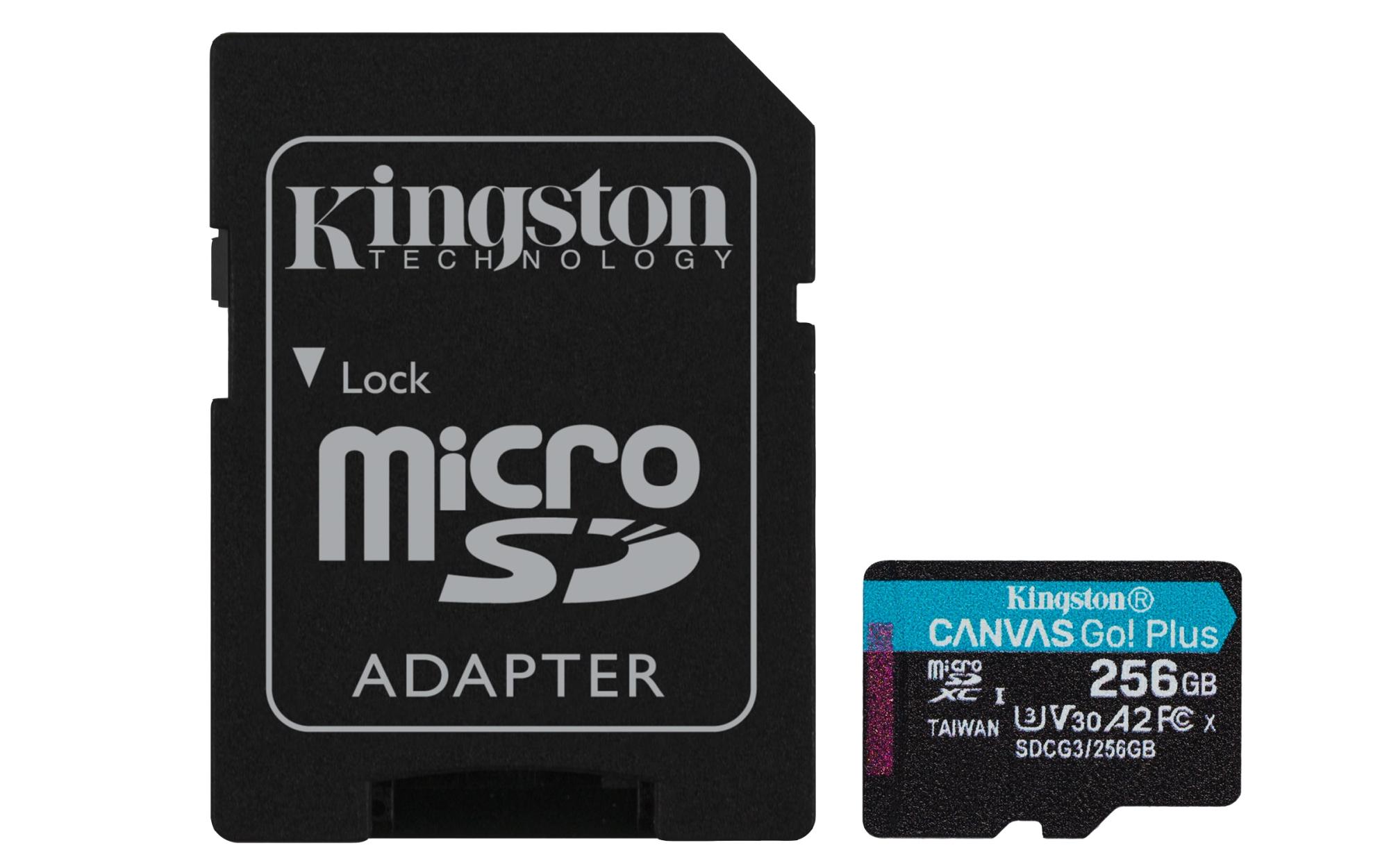 CANVAS GO! PLUS MEMORIA FLASH 256 GB SD CLASE 10 UHS-I